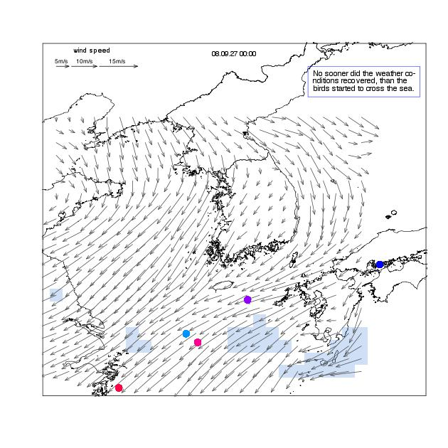 Movements of Oriental honey-buzzards and the temporal change in the weather conditions in the East China Sea, the Korea/Tsushima Strait, and the Korea Peninsula during the 2006-2008 autumn